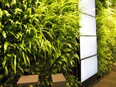 Design Milk: Bella Sky Hotel Published on February 3rd, 2012 Grass wall in lobby