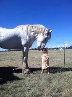 A huge horse leaning its head over the fence and resting its nose on a toddler girl's head.