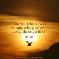 You were born with wings. Why prefer to crawl through life? RUMI