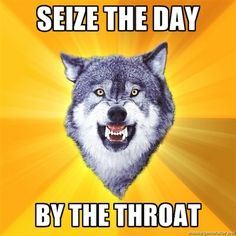 seize the day wolf | visit memegenerator net