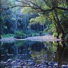 Bellingen River by @