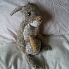 Marilyn Eves added a photo of their purchase Holland Lop, Little Duck, Little My, Knitting Kits, Knitting Patterns, Instagram Gallery, Lop Eared Bunny, Youtube How To Make, Wild Rabbit