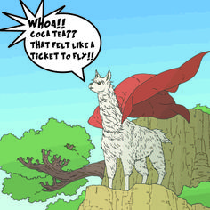32 Best The Diary of a Llama images in 2014 | Super foods
