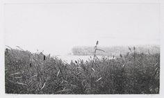 Reinder Homan Woodcut Art, Landscape Drawings, Botanical Gardens, Printmaking, Outdoor, Etchings, Posts, Medium, Outdoors