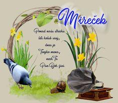 marec – pre potešenie duše Nasu, Boho, Plants, Bohemian, Plant, Planets