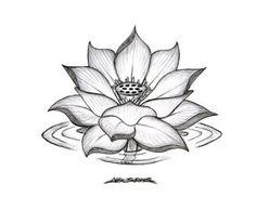 minus water ripple, and change the bud_ _ Black lotus tattoo design Black Lotus Tattoo, Lotus Tattoo Design, Lotus Flower Design, Flower Tattoo Designs, Flower Tattoos, Lotus Flowers, Flower Designs, Flower Drawing Tumblr, Lotus Drawing