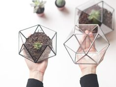 Little Geometric Terrarium Set / Icosahedron + Cuboctahedron / Handmade Glass Terrariums / Modern Planter Set for Indoor Gardening by Waen on Etsy https://www.etsy.com/listing/213849658/little-geometric-terrarium-set