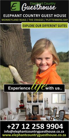 The Elephant Country Guest House near Plettenberg Bay in South Africa is definitely the place for those who appreciate exceptional local hospitality, elephants on your doorstep; a truly unforgettable stay for every member of the family. Luxury Accommodation, Elephants, Hospitality, Great Places, South Africa, Country, House, Rural Area, Home