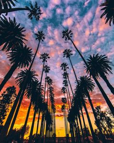 Sunset, California