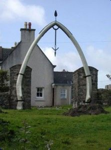 The two bones that comprise this arch on the Isle of Lewis are the lower jaw bones of a Blue Whale and were removed from a beached whale that came ashore in 1920. Our tips for 25 fun things to do in Scotland: http://www.europealacarte.co.uk/blog/2010/12/30/things-scotland/