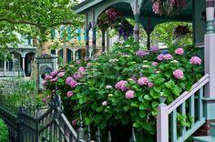 Victorian house and gardens - Cape May, NJ. Captain Mey's Inn.