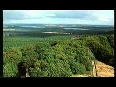 Danish Symphony  - Danmarksfilmen