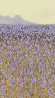 Download premium vector of Blooming lavender garden mobile phone wallpaper vector by marinemynt about lavender, landscape background, mobile phone wallpaper flower field, floral phone background, and landscape painting 2043962