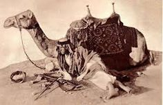 """Lawrence, or """"Lawrence of Arabia"""" with camel and Enfield rifle, circa 1917 : HistoryPorn Gertrude Bell, Camelus, Lawrence Of Arabia, Historical Pictures, British Army, British History, North Africa, World War I, The Dreamers"""