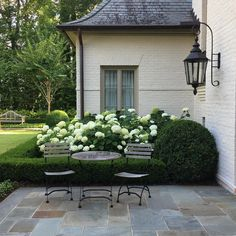 """988 Likes, 11 Comments - Things That Inspire (@ttiblog) on Instagram: """"Year after year, the Annabelle hydrangea look so beautiful. @landplusassociates"""""""