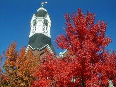 Churches and Fall...my fav