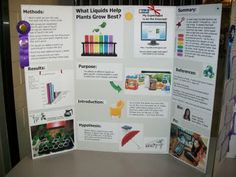 1000 Images About Joshua Science Fair On Pinterest