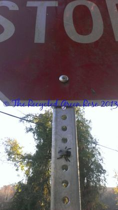 Fly Geocache  Evil Sneaky Hide by TheRecycledGreenRose on Etsy, $5.00