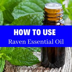 Raven is an awesome blend of Ravintsara, Lemon, Wintergreen, Peppermint & Eucalyptus Radiata essential oils. We love to use it all winter long to keep us from getting stuffed up! This post tells you all about the benefits of it and gives you ideas about how to use it! It's really helpful! Raven Essential Oil, Natural Essential Oils, Young Living Essential Oils, Natural Oils, Ravintsara, Lemon Oil, Natural Living, Starter Kit, Being Used