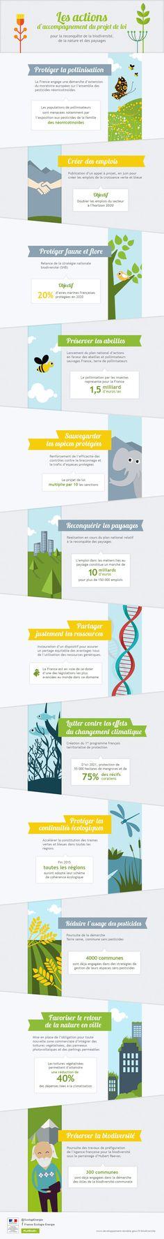 """Plan de lutte contre la mortalité des abeilles """"France terre de pollinisateur"""", ministère de l'écologie."""