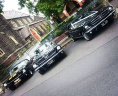 Mustangs in Black 1966 Convertible Ford Mustangs including our Shelby GT350.