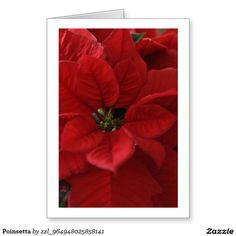 Poinsetta Greeting Card