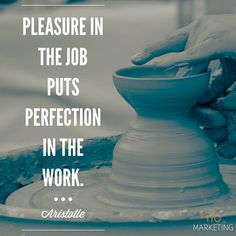 Pleasure in the job puts perfection in the work. -Aristotle #tw