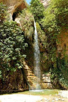 En Gedi Nahal David waterfall, land of Israel.
