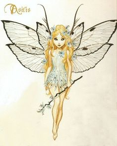 illustration de fée (8)