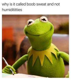 Just hella memes prt. 1 - Imgur