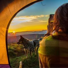Have you taken your dog camping yet? 25 Reasons Dogs Make The Best Camping Companions!