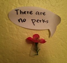 """""""There are no perks."""" Hahaha!"""