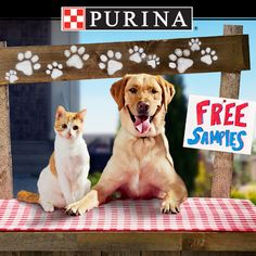 Play the Purina® Deal-a-Day Giveaway everyday through 8/13 for a chance to win FREE Purina products!  Visit www.PureLoveForPets.com