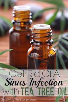 "Tea Tree oil for sinus infection To recap. will burn at first. only ab 10 min the ""how to"" part:  1. Boil some water in a pot on the stove.  2. Add a couple of drops of Tea Tree Oil to the boiling water.  3. Breathe in the steam for a few minutes."