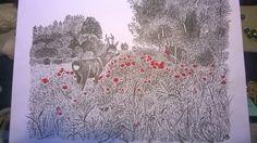 Sommerbuk i valmuer by Lone Bruun. #Art, #Tegninger,