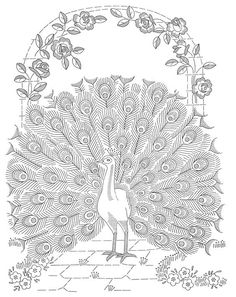 laura wheeler embroidery patterns   Laura Wheeler Design 601 — Peacock Bedspread