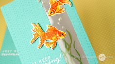 Faux Colored Embossing and Window Panel Card Video by Jennifer McGuire Ink