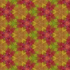Bush2 fabric by bahrsteads on Spoonflower - custom fabric