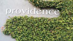 Providence on Tastemade.com