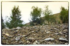 Suelo del cerro en Monterrico