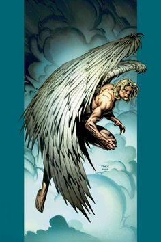 Angel by David Finch