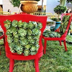 Succulent chairs!