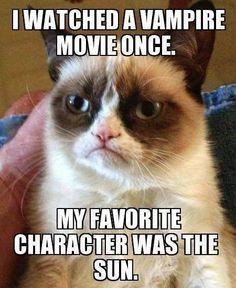 #GrumpyCat #Meme.............i love this cat!