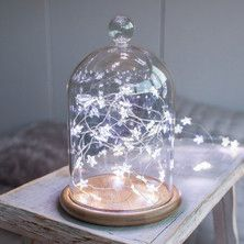 Bell Jar & White Star Micro Lights