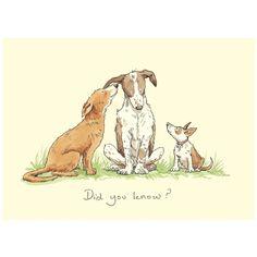 Did You Know card by Anita Jeram - Two Bad Mice - Did You Know a greeting card by Anita Jeram for dog lovers - Cartoon Dog, Cute Cartoon, Animal Drawings, Cute Drawings, Anita Jeram, Dog Quotes, Art And Illustration, Animal Illustrations, Dog Art