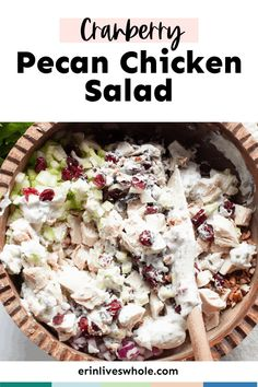 Cranberry Pecan Chicken Salad is a must-try recipe that makes the perfect filling for wraps and sandwiches. It's made with cranberries, red onion, celery, and loads of flavor components! Pecan Chicken Salads, Cranberry Chicken, Diced Chicken, Chicken Salad Recipes, Dried Apples, Dried Cranberries, American Diet, Salad Dishes, Plain Greek Yogurt