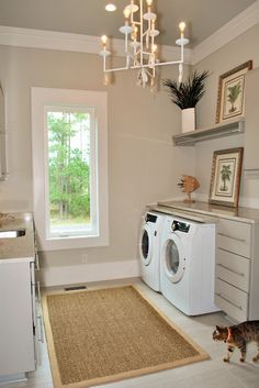 Cat laundry room   Smelly Towels?   Stinky Laundry?  Washer Odor?   http://WasherFan.com   Permanently Eliminate or Prevent Washer & Laundry Odor with Washer Fan™ Breeze™  #Laundry #WasherOdor#SWS