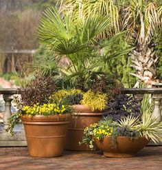 Instant, Quick, Colorful Container Gardens < 25 Ways to Create an Outdoor Oasis - MyHomeIdeas.com