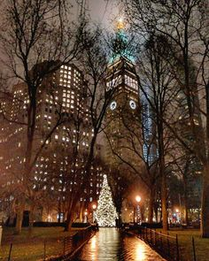 Madison Square Park, NYC | Instagram photo by @chandlelee