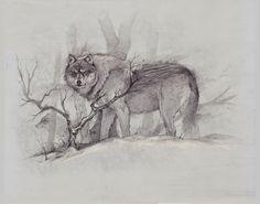 Grey Wolf, Bobby Rebholz on ArtStation at https://www.artstation.com/artwork/L4Z5w